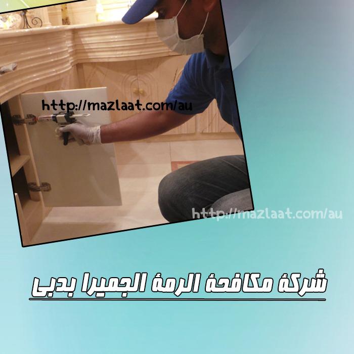 شركة مكافحة الرمة بالجميرا دبي